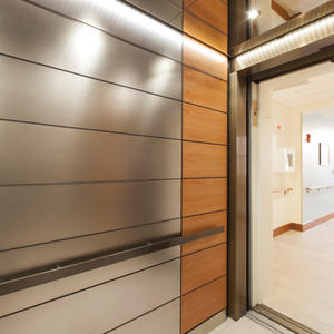 LEVELe-103 Elevator Interior with main panels in Fused White Gold, Sandstone