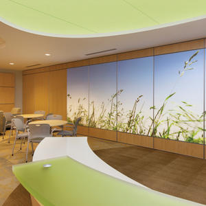 LEVELe Wall System: LightPlane panels in ViviGraphix Spectra glass