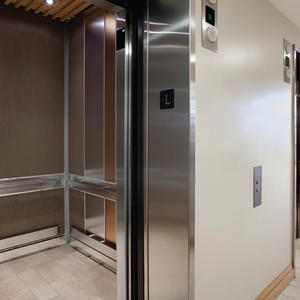 LEVELe-101 Elevator Interior: Capture panels in Bonded Bronze, Natural Patina