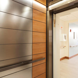 LEVELe-103 Elevator Interior: Minimal panels in Fused White Gold, Sandstone