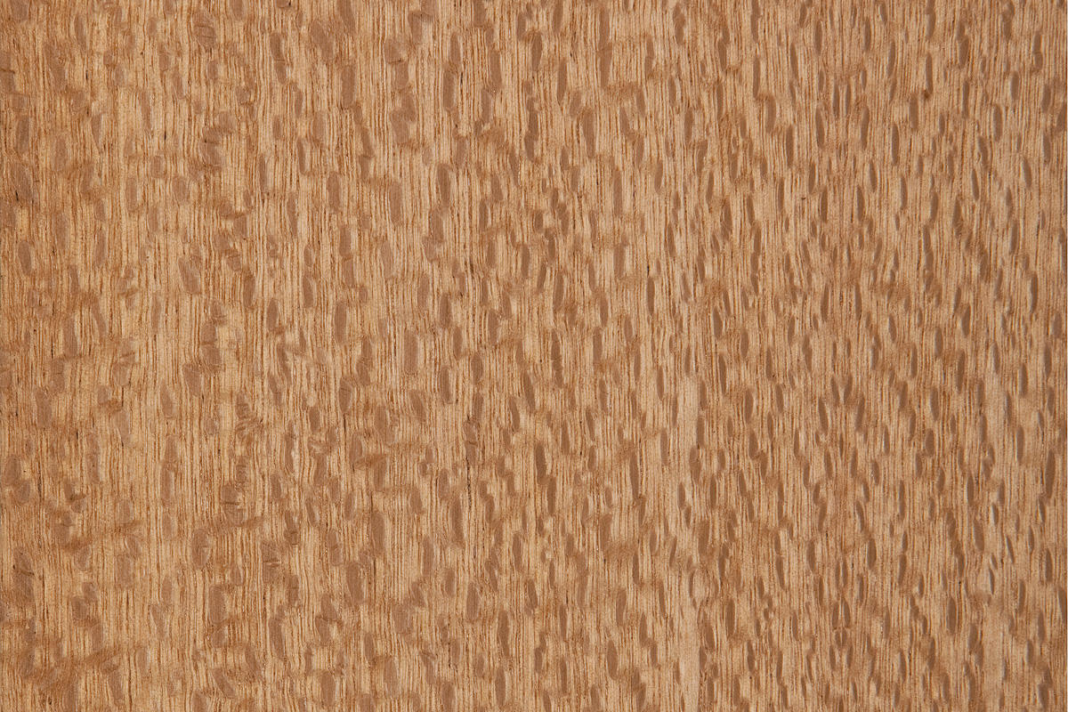 Premium Wood Veneer shown in Australian Lacewood