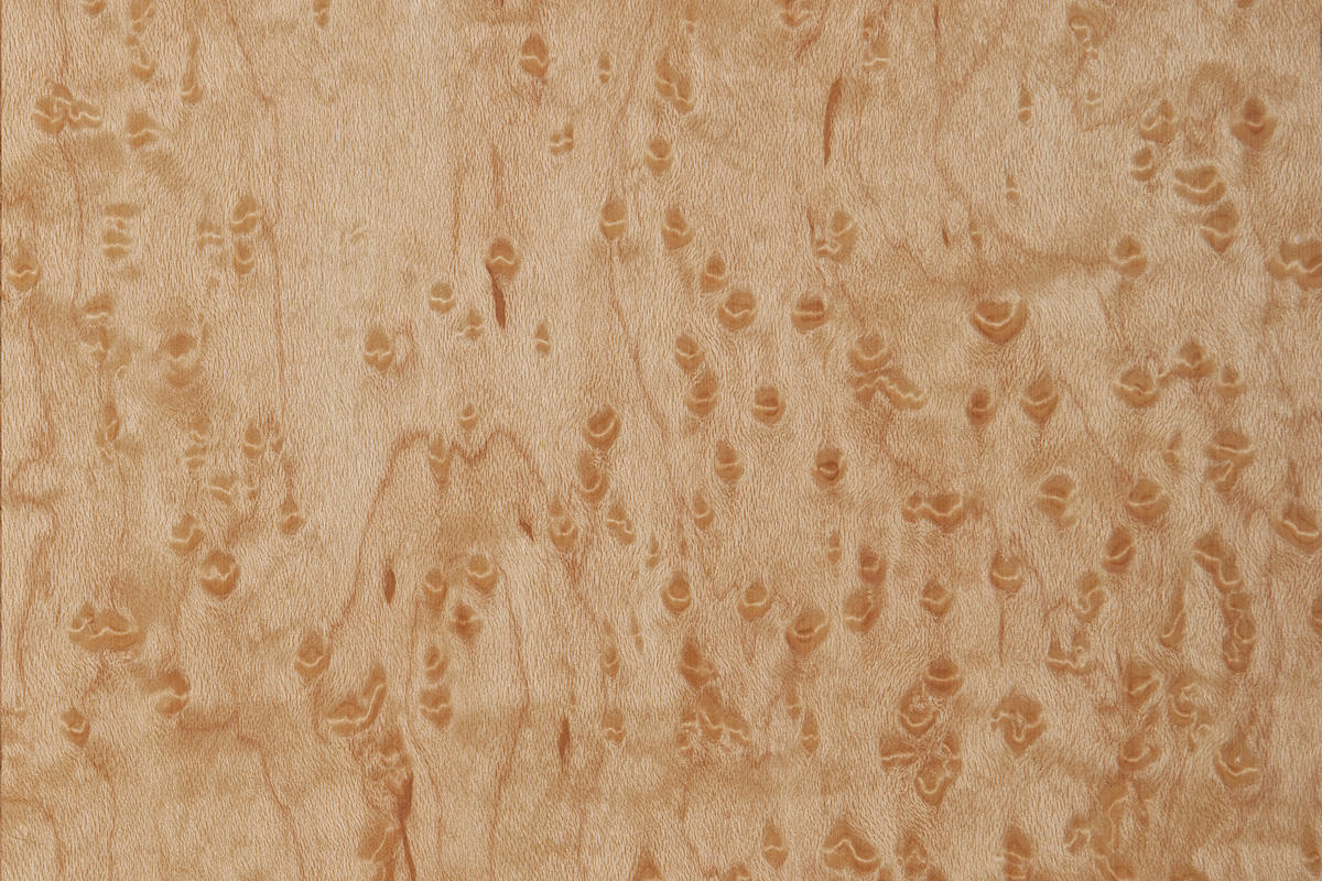 Wood Veneer Architectural Forms Surfaces