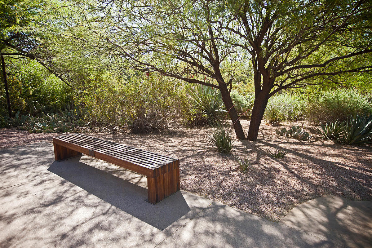 Hudson Bench Shown In 8 Foot, Surface Mount Configuration With FSC 100% Ipé  Hardwood Slats At The Desert Botanical Garden, Phoenix, Arizona