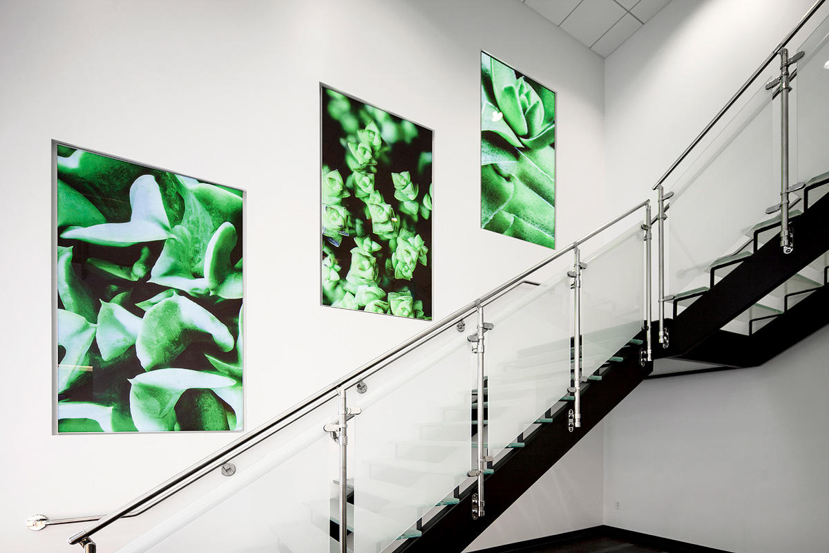 LightPlane Panels in ViviSpectra Spectrum glass with custom image interlayer