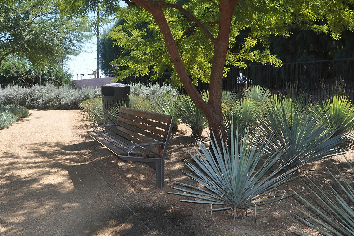 Sunnylands Center Gardens Forms Surfaces India