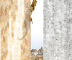 ViviGraphix Elements: Glass that Captures the Rhythms of Nature