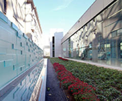 Forms+Surfaces Acquires Joel Berman Glass Studios