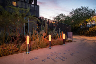 Light Column Bollards in Stainless Steel with Satin finish shown in RGBW