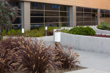 Rincon Bollards shown in Stainless Steel with Satin finish