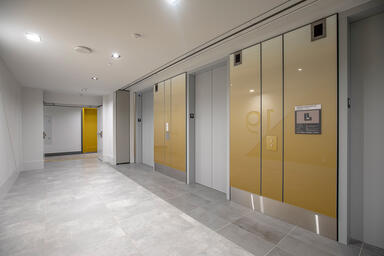 LEVELe Wall Cladding System with Minimal panels; insets in ViviGraphix Gradiance