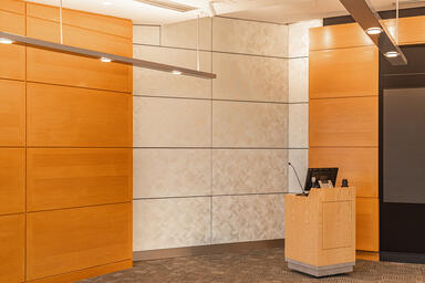 LEVELe Wall Cladding System with Blind panels; insets in ViviGraphix