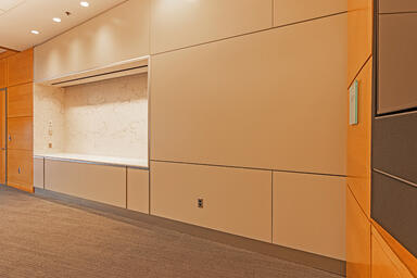 LEVELe Wall Cladding System with Blind panels; insets in ViviChrome