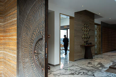 Bonded Metal Door in Bonded Bronze with Dark Patina and Corona pattern at Priva