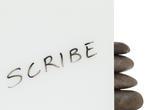 ViviChrome Scribe