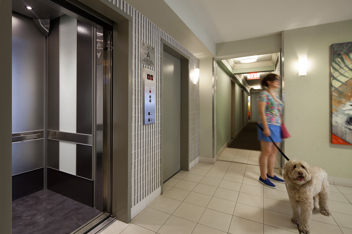 Renoir house apartments forms surfaces for Elevators in houses