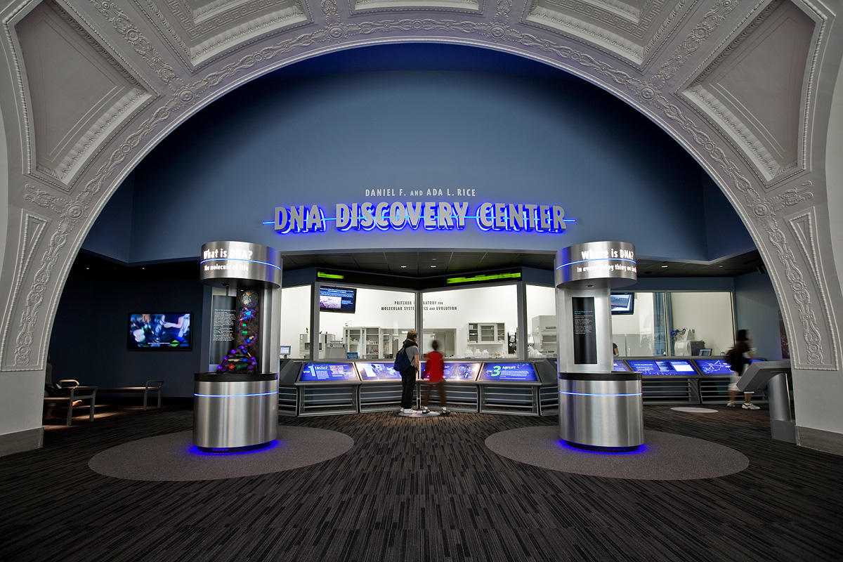 The Field Museum Dna Discovery Center Forms Surfaces