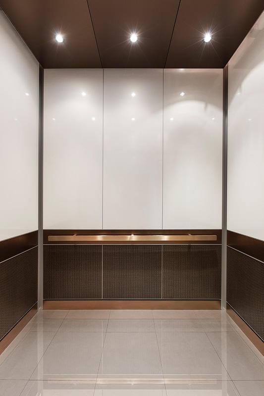 Levele 105 Elevator Interior With Custom Upper Panel